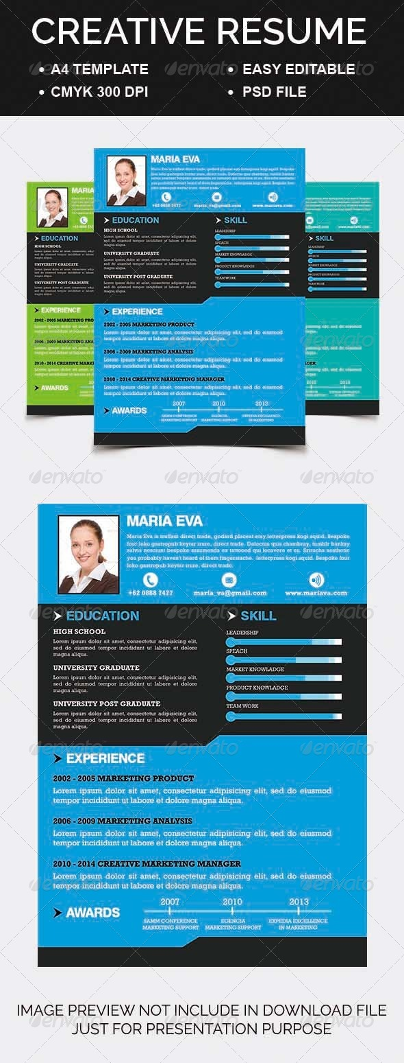 GraphicRiver Creative Resume 6983649