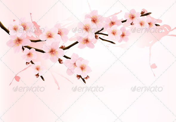 GraphicRiver Sakura Branch 6990256
