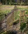 Kissing Gate - PhotoDune Item for Sale