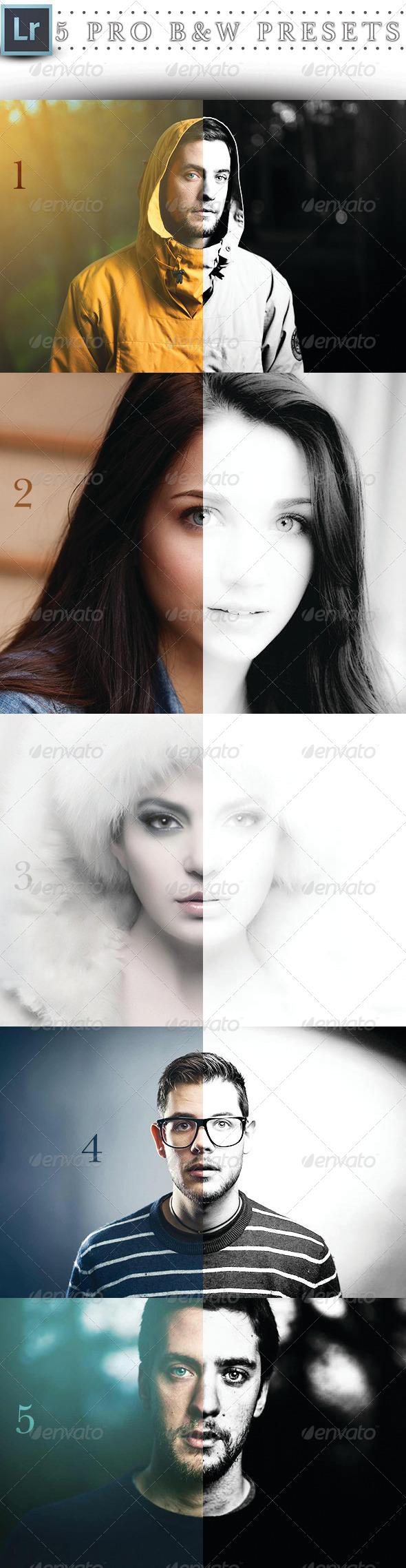 GraphicRiver 5 Pro Lightroom BNW Preset 6992799