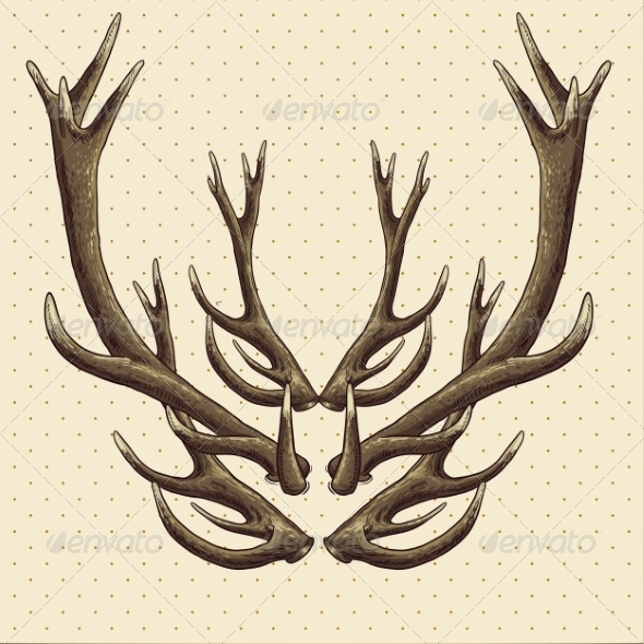 GraphicRiver Hipster Vintage Background with Deer Antlers 6996016
