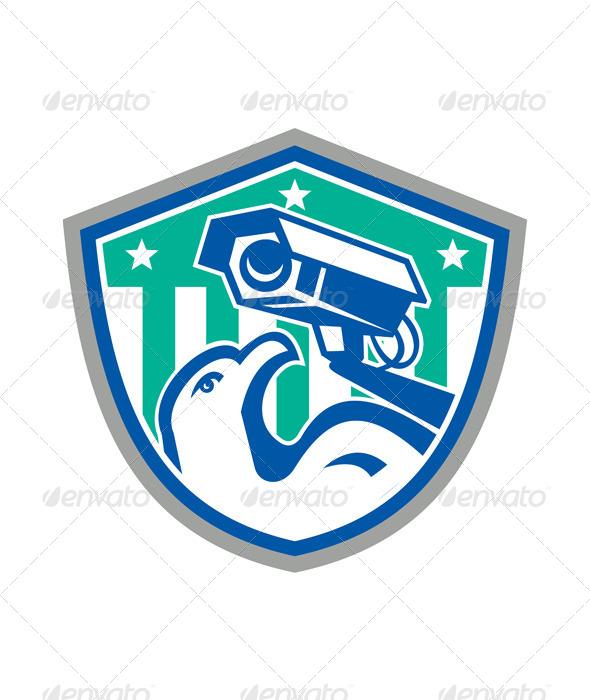Eagle Security CCTV Camera Retro Shield