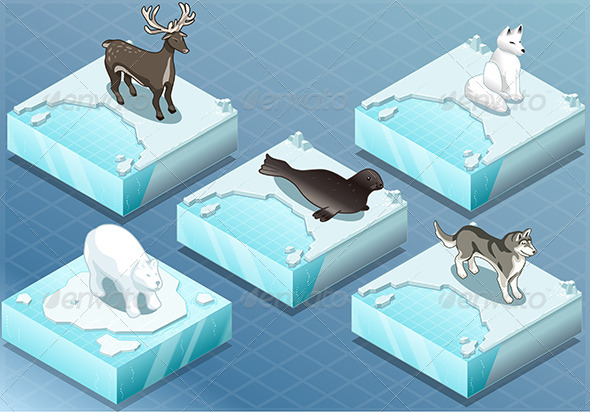 GraphicRiver Isometric Arctic Animals on Ice 7001042
