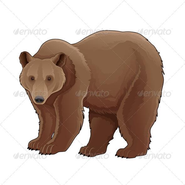 GraphicRiver Brown Bear 7004577
