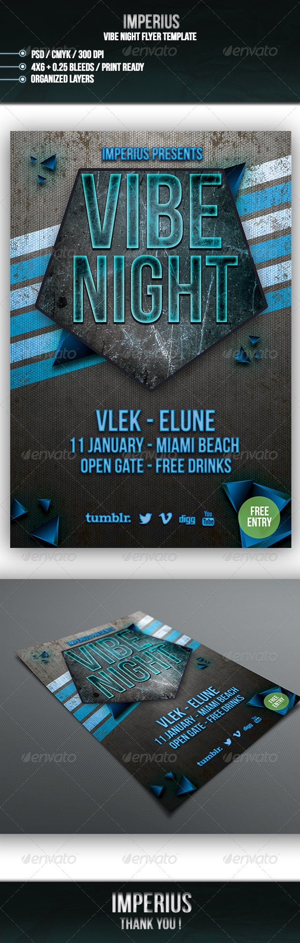 GraphicRiver Vibe Night Flyer 7004625