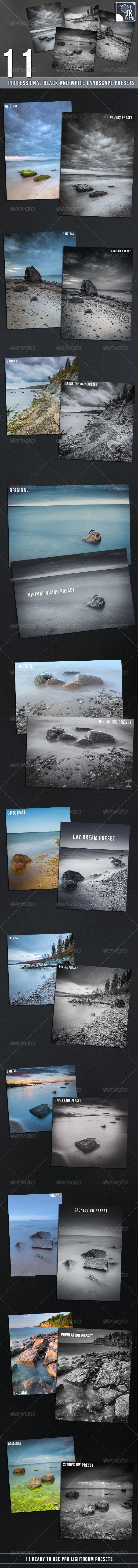 GraphicRiver 11 PRO BW Lightroom Presets Landscape 7014680