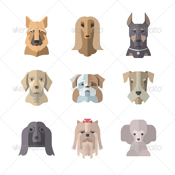 GraphicRiver Collection Of Dog Icons In Flat Illustration Style 7017967