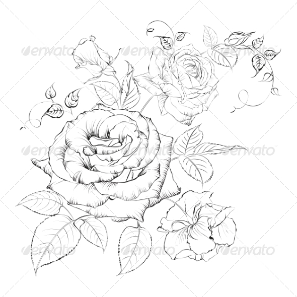 GraphicRiver Bouquet of Roses 7018900