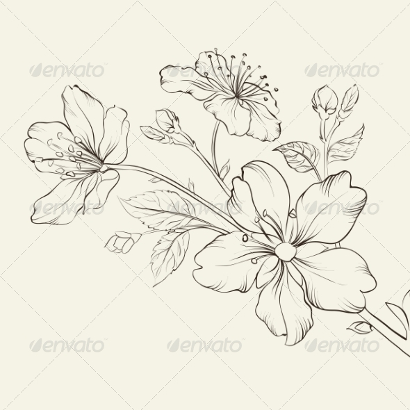 GraphicRiver Calligraphy Cherry Blossom 7022665
