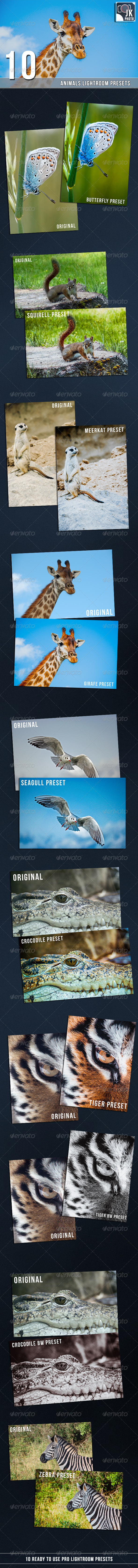 GraphicRiver 10 PRO Animals Lightroom Presets 7027147