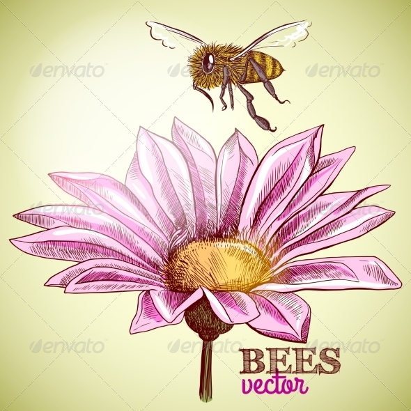 GraphicRiver Honey and Flower 7028002