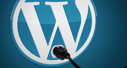 WP Plugins I Have