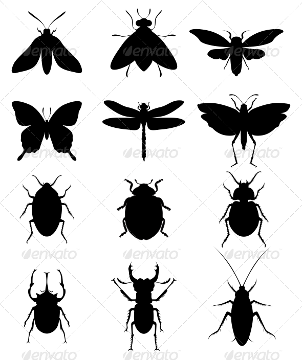 GraphicRiver Insect Silhouettes 7034966