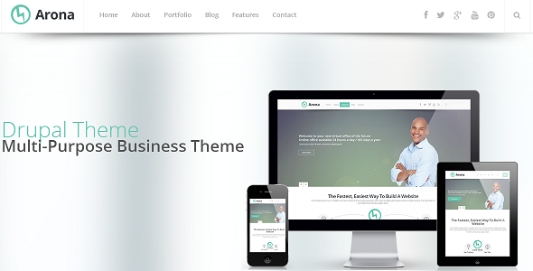 ThemeForest Arona Responsive Business Drupal Theme 6520567