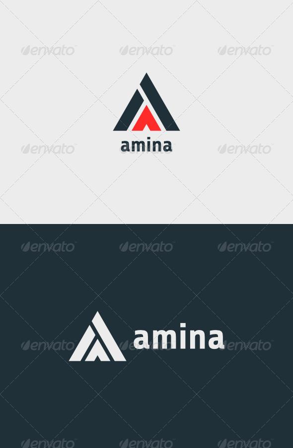 GraphicRiver Amina Logo 7039611