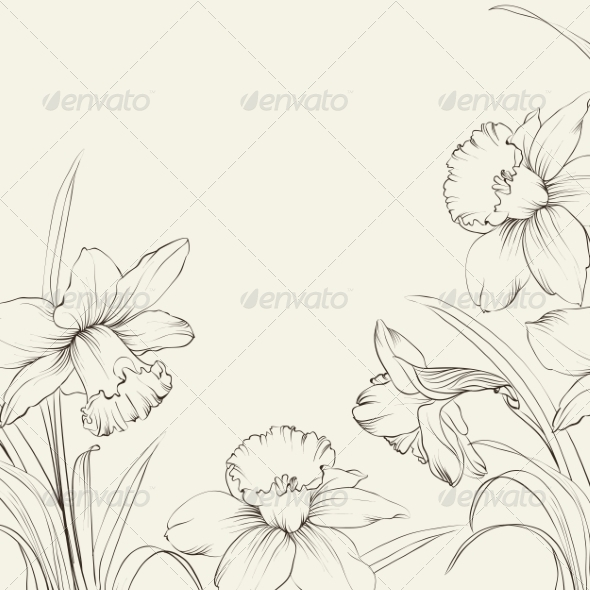 GraphicRiver Narcissus Flowers 7042372