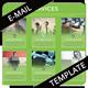 Multipurpose E-Mail Template 03 - GraphicRiver Item for Sale