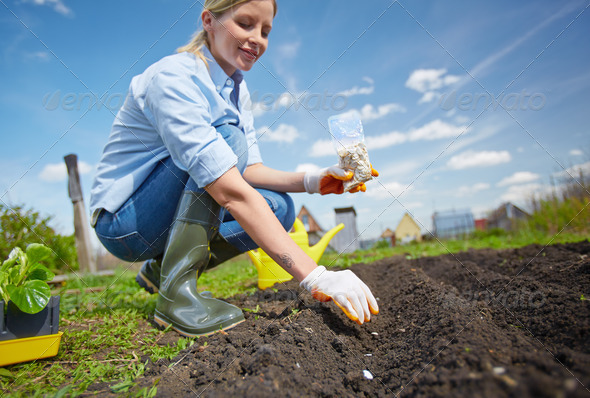 Garden worker - Stock Photo - Images