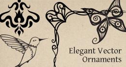 Elegant Vector Ornaments