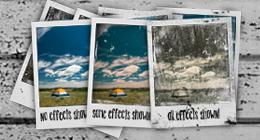 Polaroid Sets!