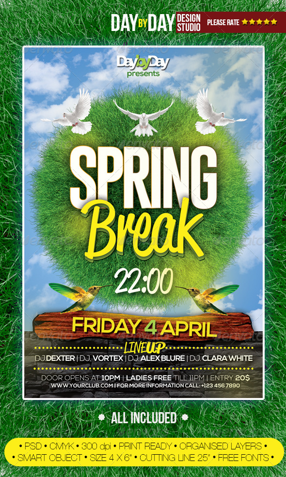GraphicRiver Spring Break Flyer 7068652