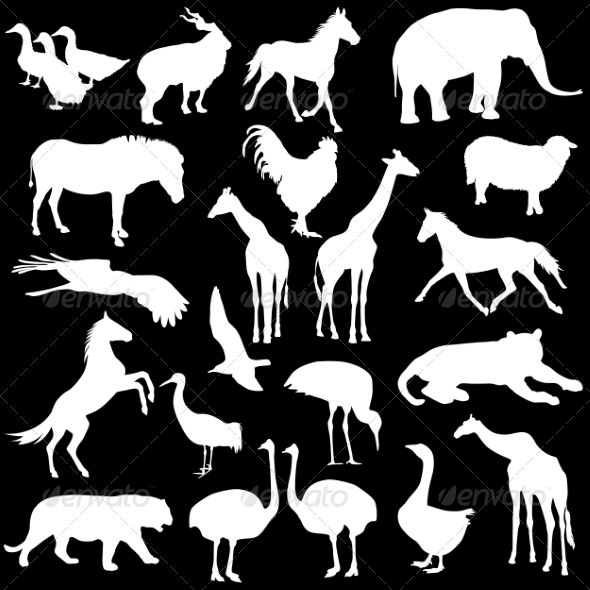 GraphicRiver Animal Silhouettes 7069135