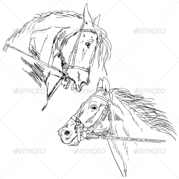 GraphicRiver Black Horse 7069544