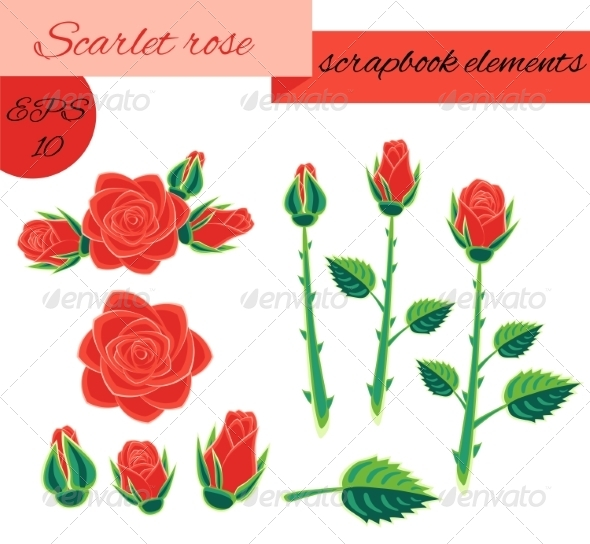 GraphicRiver Roses 7082655