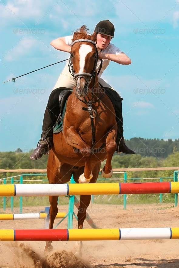 show jumping - Stock Photo - Images