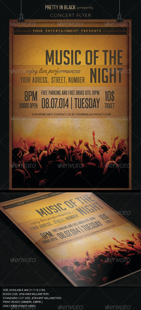 GraphicRiver Music Concert Flyer 7084886