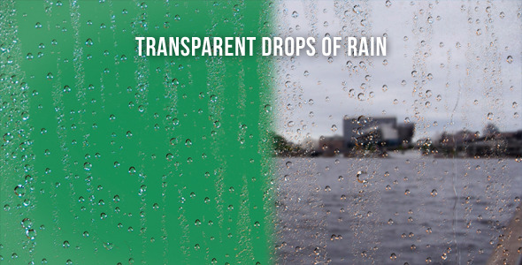 Transparent Drops Of Rain