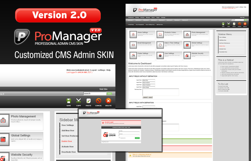 ProManager v2.0 Customized Admin CMS Skin!