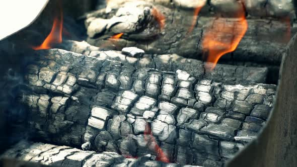Download Burning Wood For the Barbecue nulled download
