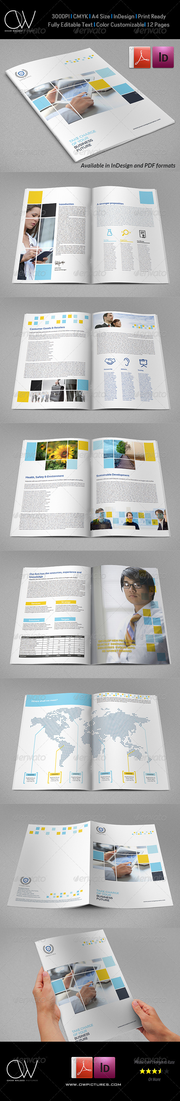 GraphicRiver Company Brochure Template Vol.30 12 Pages 7098241