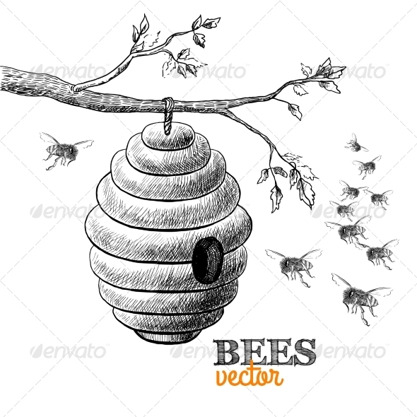 GraphicRiver Honey Bees 7103153