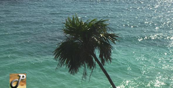 Tulum Beach 05