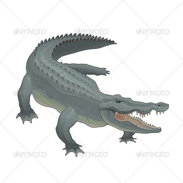 GraphicRiver Crocodile 7106142