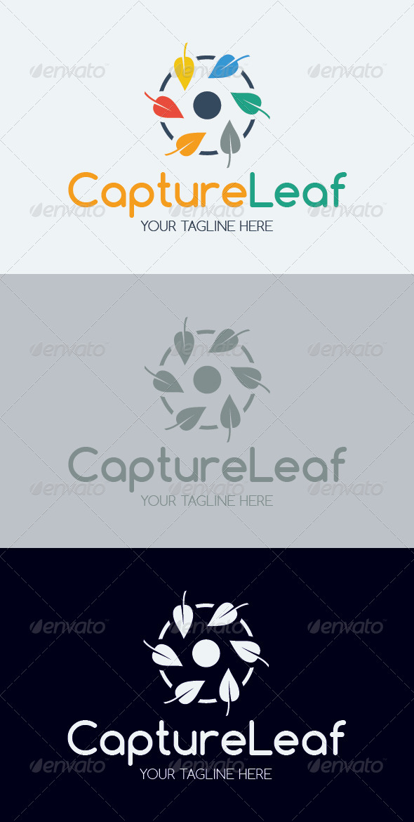 GraphicRiver Capture Leaf Logo Template 7111300