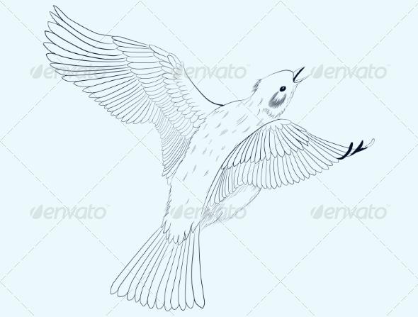 GraphicRiver Little Bird 7133202