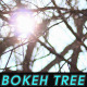 Bokeh Tree Background 9 - VideoHive Item for Sale