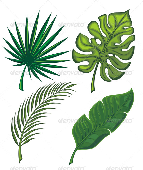 GraphicRiver Set of Tropical Leaves 7157124