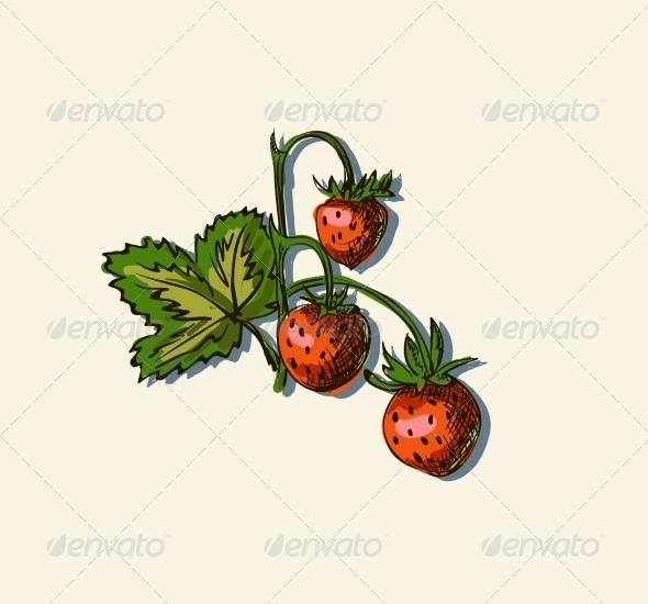 GraphicRiver Drawing of Strawberry 7159709