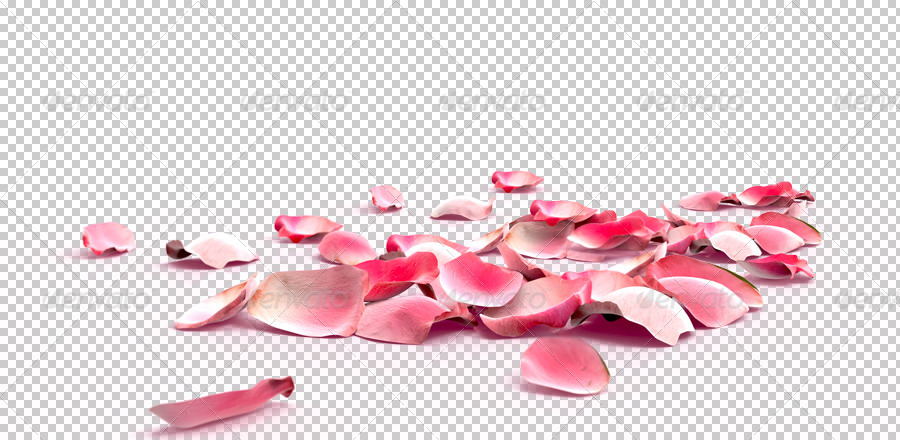 Rose Petals Background Construction Kit By Ayashi