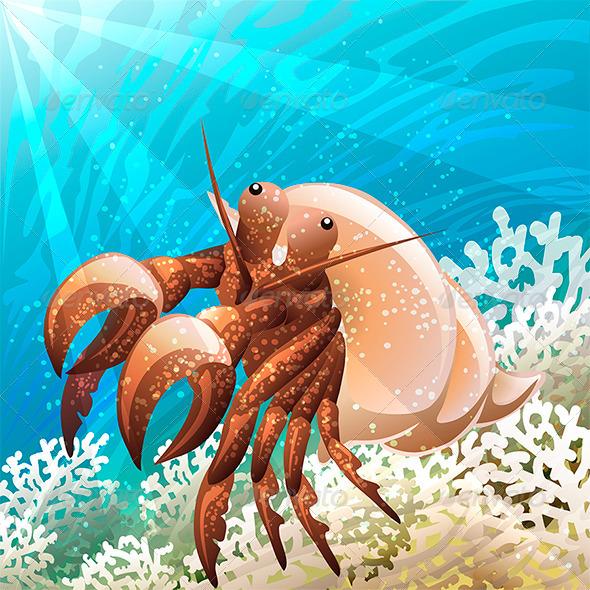 GraphicRiver Hermit Crab 7165389