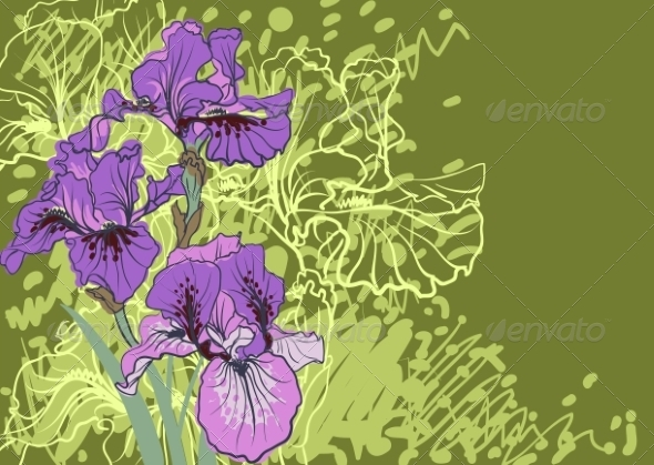 GraphicRiver Iris Flower 7169153