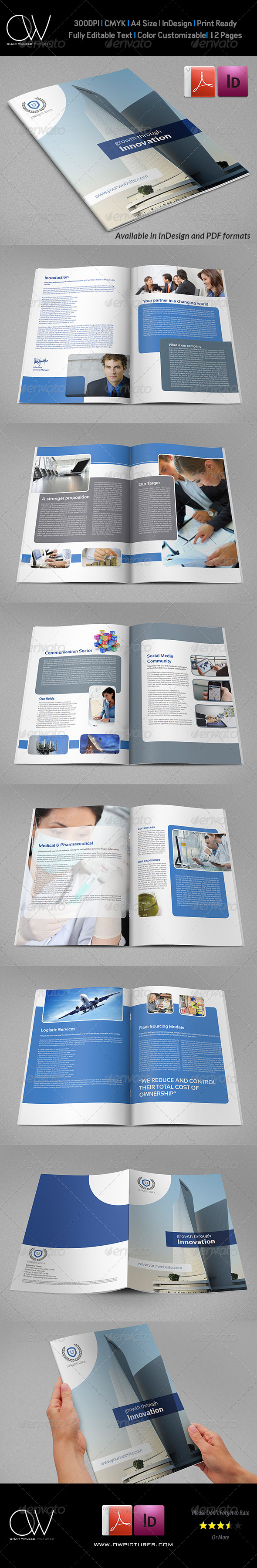 GraphicRiver Company Brochure Template Vol.31 12 Pages 7176384