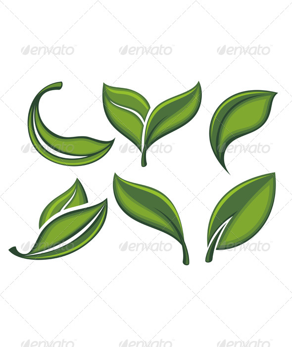 GraphicRiver Set of Green Leaves 7176543