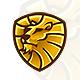 Lion Head Logo - GraphicRiver Item for Sale