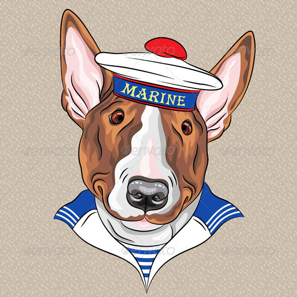 GraphicRiver Cartoon Hipster Bullterrier Dog Sailor 7177880