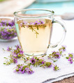 Fresh thyme tea - PhotoDune Item for Sale